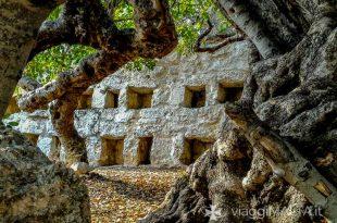 strada romana xemxija - vecchio carrubo e apiario